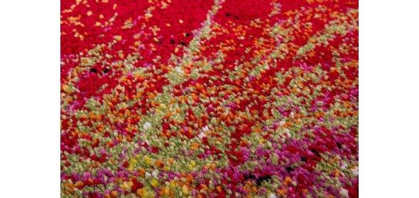 Lalee Esprit Vloerkleed 160x230 Regenboog 300