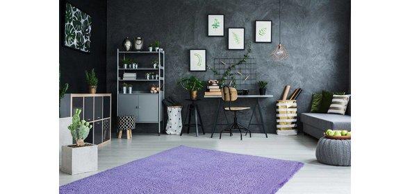 Obsession Carnival Vloerkleed 160x230 Violet