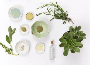 Plant Based Oils