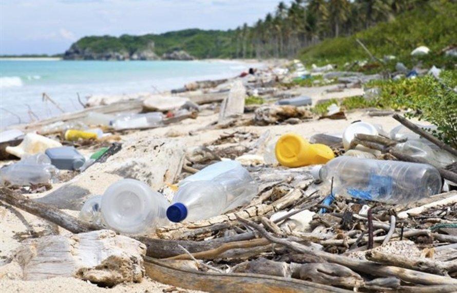 6 easy ways to go plastic free