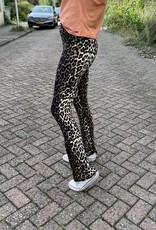 Flared broek luipaard