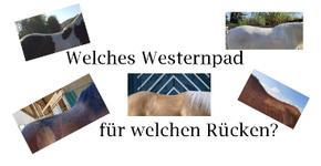 Welches Westernpad für welchen Pferderücken?