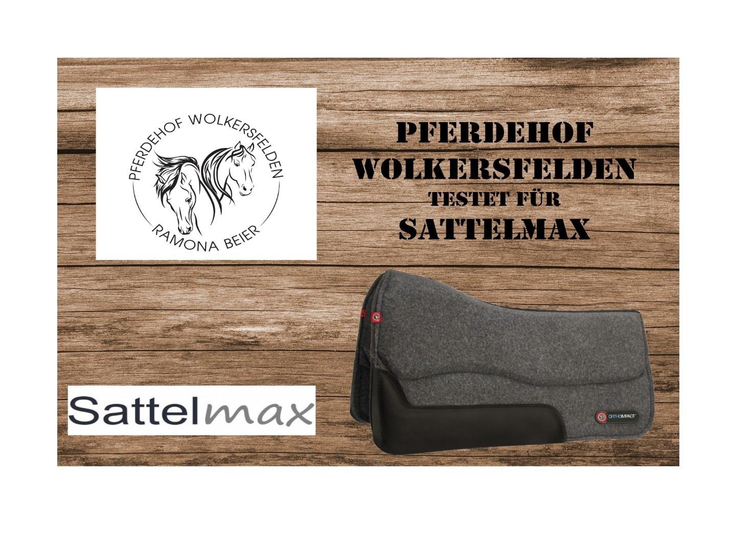 TESTERGEBNIS: T3 Wool Felt Performance Westernpad mit Ortho Polsterung von Ramona Beier (Pferdehof Wolkersfelden)
