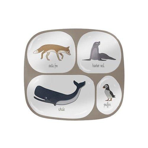 Sebra Sebra vakkenbordje Arctic Animals 0+