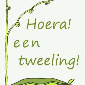 Gnoom Dubbele kaart Hoera een tweeling/ gefeliciteerd!