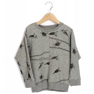Lotiekids Sweatshirt Grey melange Turtles