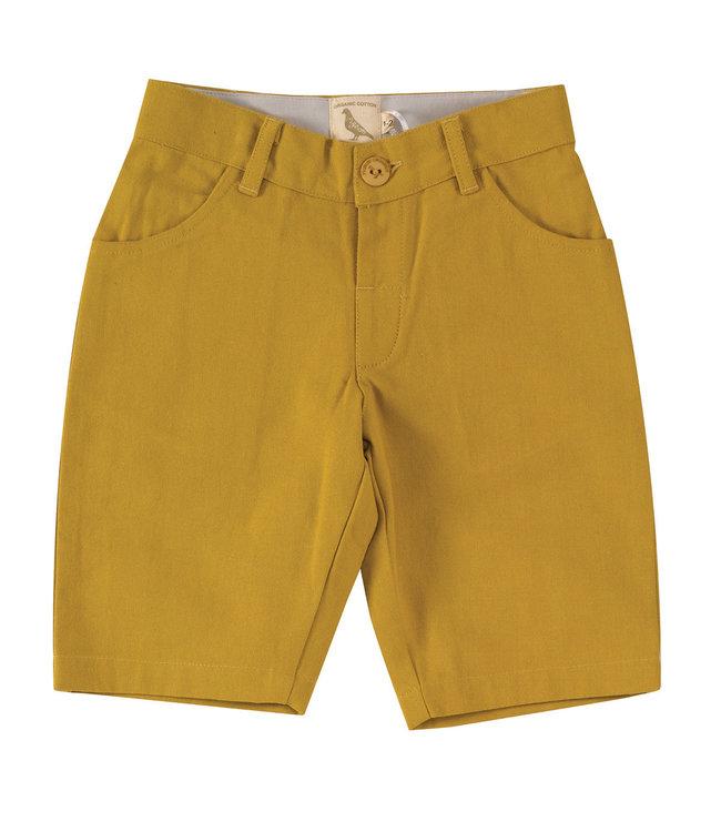 Pigeon Canvas Shorts Mustard