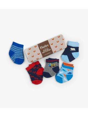 Hatley Baby Boys Crew Sokken in gift box