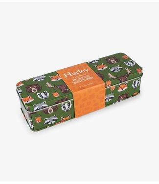 Hatley Boys Crew Sokken in gift box