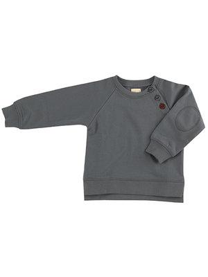 Pigeon Sweatshirt (jersey) Teal