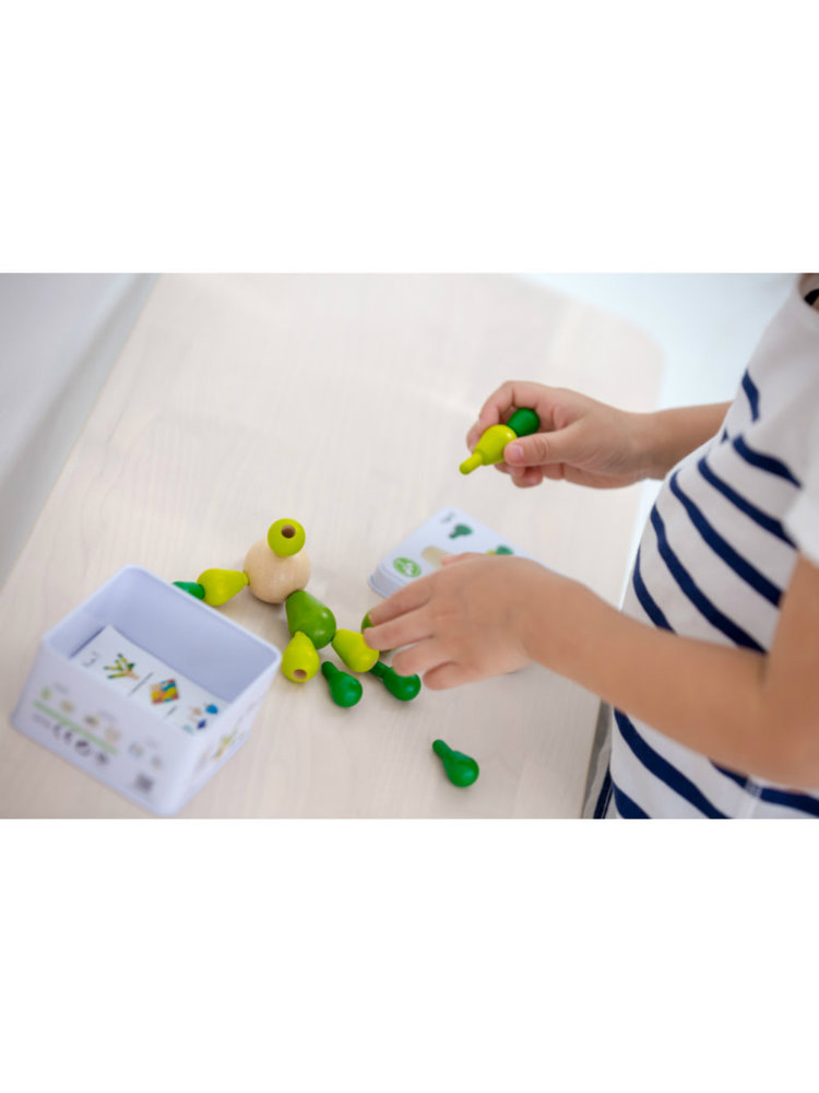 Plan Toys Balanceer spelletje Cactus van duurzaaam hout in metalen opbergdoosje