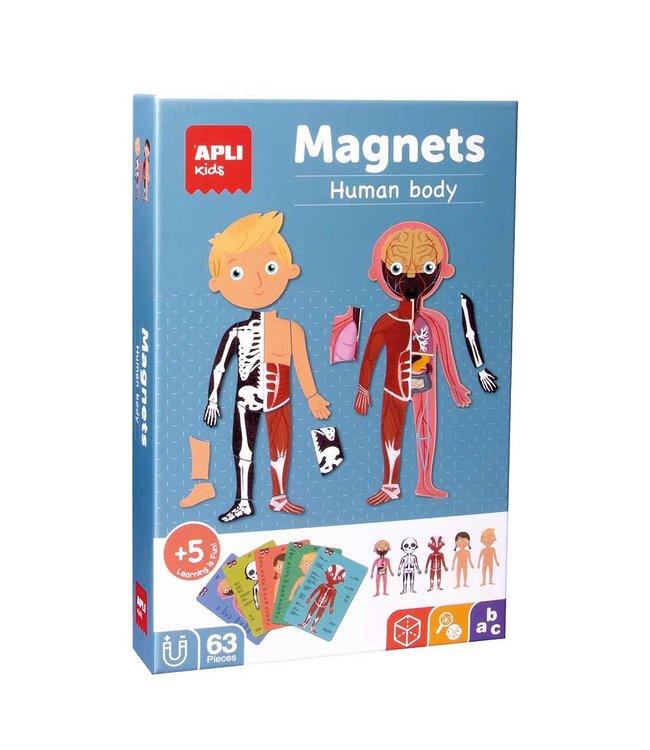 Apli Menselijk Lichaam Magneetkaart - 63 Delig
