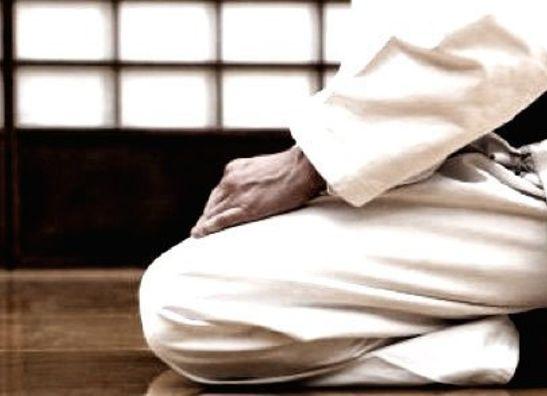 Karatepakken / Gi's