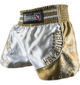 HAYABUSA Lion Warrior Muay Thai (Kick)Boks Broekje - Zilver/Goud