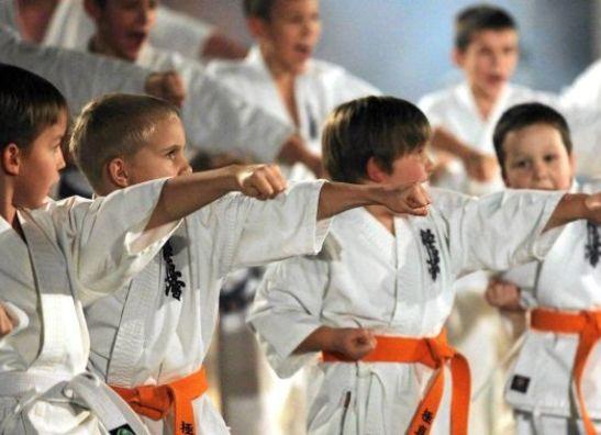 Kyokushin  Wear Kinderen