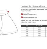 HAYABUSA Premium Muay Thai (kick) boxing shorts - zwart