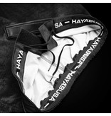 HAYABUSA Hayabusa Hexagon Fight Shorts