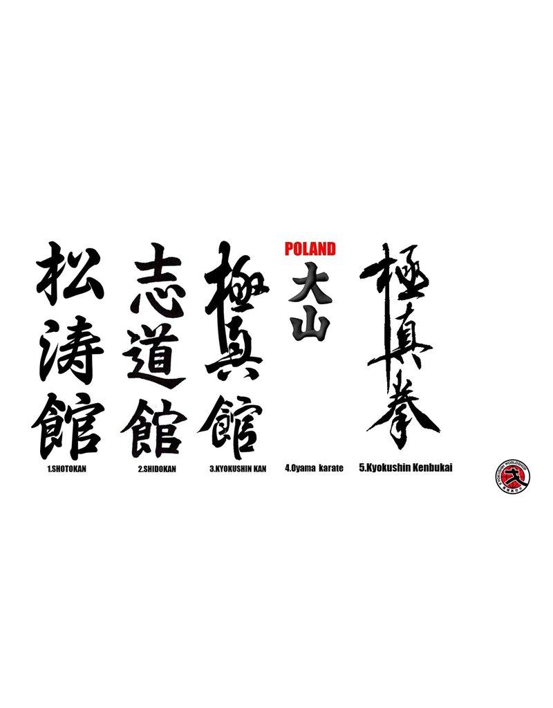 ISAMU 勇 ISAMU FULL CONTACT KARATE DOGI I WHITE