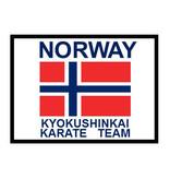 ISAMU NORWAY KYOKUSHINKAI KARATE TEAM SLEEVE EMBROIDERY