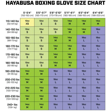 HAYABUSA Hayabusa S4 Bokshandschoenen Kit Roze