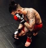 RDX SPORTS RDX T6 MMA Sparringhandschoenen
