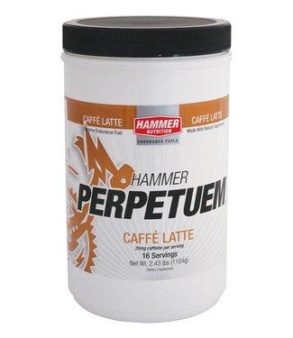 Hammer Nutrition Hammer Nutrition PERPETUEM Energy sports drink (1104gr) - 16 servings