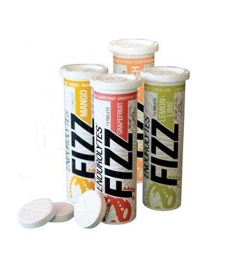 Hammer Nutrition Endurolytes Fizz (13 pestañas)