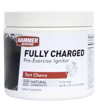 Hammer Nutrition Martillo Carboloader completamente cargado - 30 porciones