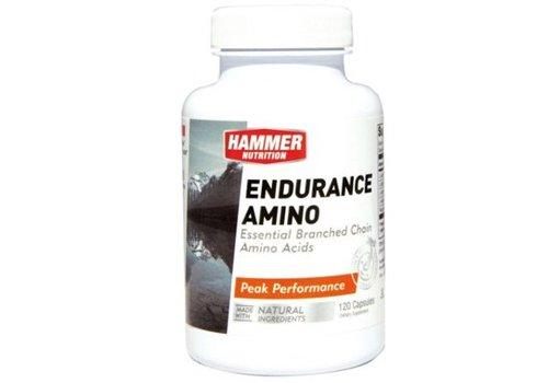 Hammer Endurance Amino (120 Capsules)