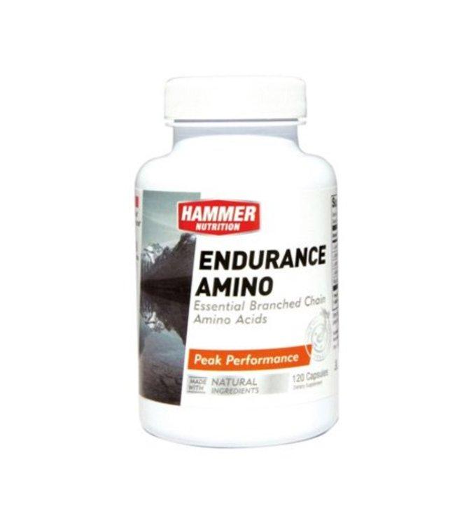 Hammer Nutrition Hammer Endurance Amino (120 Capsules)