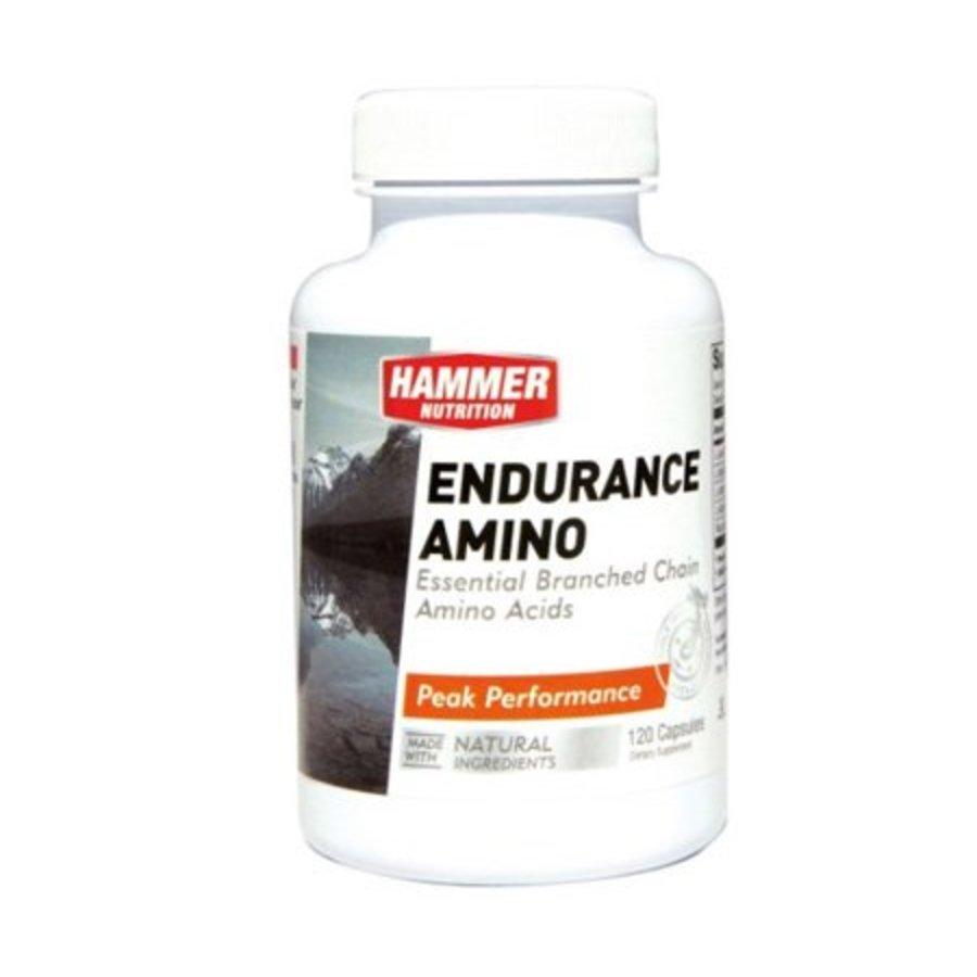 Hammer Endurance Amino (120 Capsules)-1