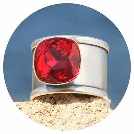 R-DINN scarlet