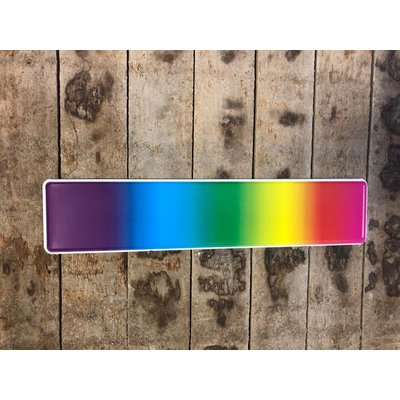 Regenboog kentekenplaat met naam