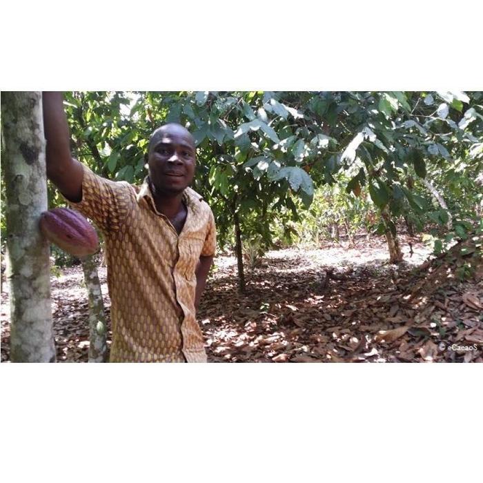 - Elfenbeinküste 100%, 100g