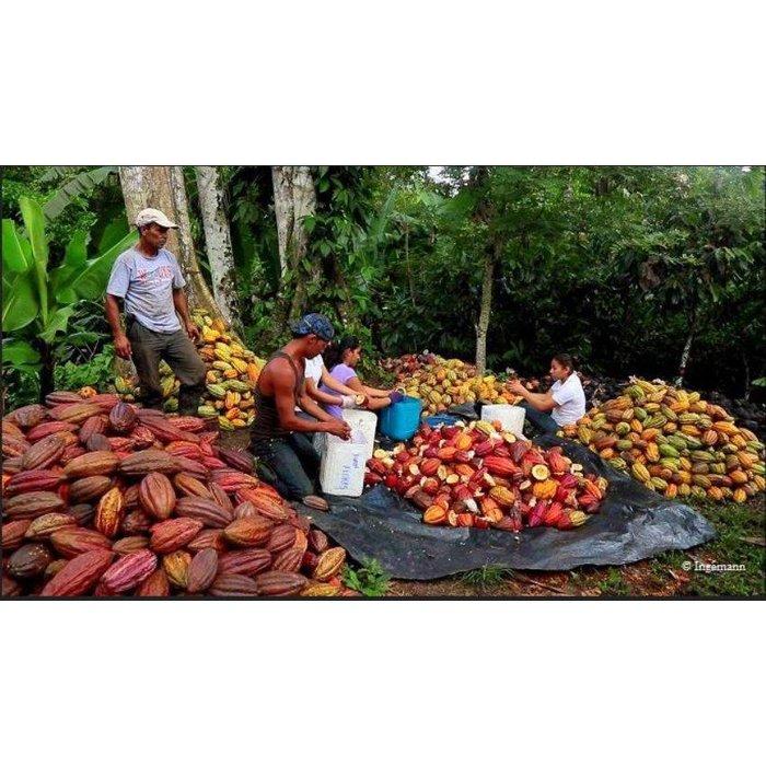 - Nicaragua Chuno® 70%, 100g