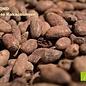 -  Kakaobohnen in 100% Schokolade, Bio , 90g