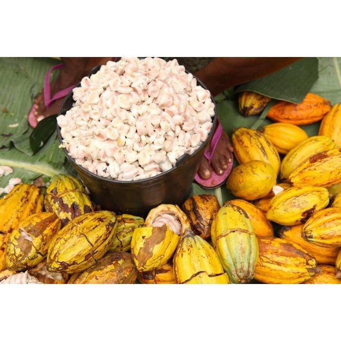 - MASSA DE CACAU | NAPOLITAINS 100% | 100% Kakao, 100g