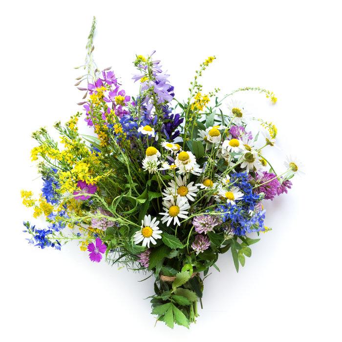 Mit Kräuter, Blumen
