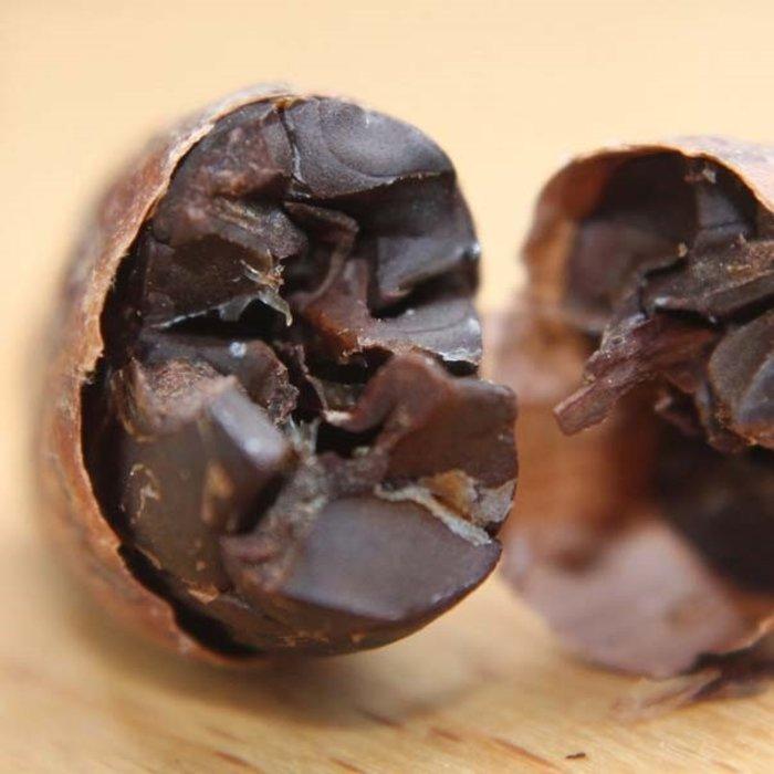 - Kakaobohnen geröstet, mit Schale, Bio