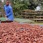 - Tansania 76% BIO, 70g