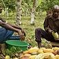 - Uganda 75% mit Whisky BIO, 70g