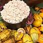 - MASSA DE CACAU | NAPOLITAINS 100% | 100% Kakao, 50g