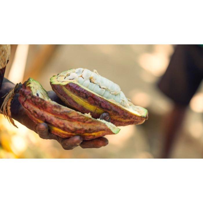 - MADAGASCAR CHOCOLATE | MADAGASCAN VANILLA | MILK / LAIT 45% | Vanille Milchschokolade, 75g