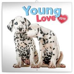Honden & Puppy Kalenders 2019