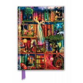 Flame Tree Aimee Stewart: Treasure Hunt Bookshelves Notebook