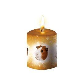 Otter House Meerschweinchen Kerze