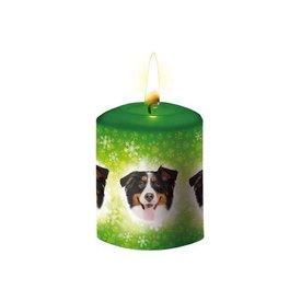 Otter House Berner Sennenhund Kerze