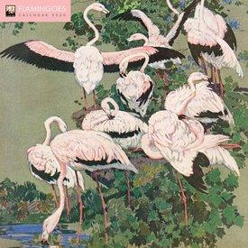 Flame Tree Flamingo's - Flamingoes Kalender 2020