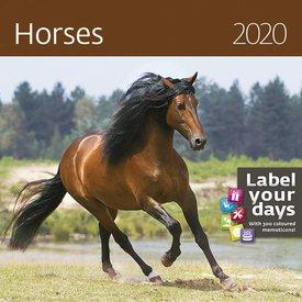 Helma Paarden - Horses Kalender 2020