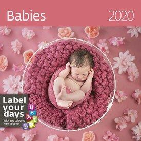 Helma Baby's - Babies Kalender 2020